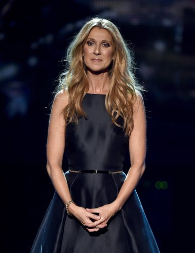 Celine Dion performs onstage during the 2015 American Music Awards at Microsoft Theater on November 22, 2015 in Los Angeles,