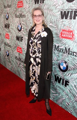 Meryl Streep attends the tenth annual Women in Film Pre-Oscar Cocktail Party presented by Max Mara and BMW at Nightingale Plaza on February 24, 2017 in Los Angeles, Calif