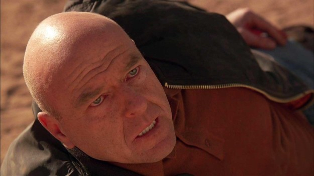 "Breaking Bad: Season 5, Episode 14 — ""Ozymandias"""